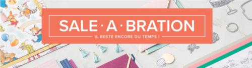 2018 03 13 Sale A Bration Durée Limitée Blog Bis