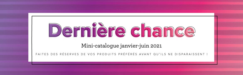 2020 06 01 Stampin'Up! Listes Fins de série Mini Catalogue Janvier Juin 2021 1
